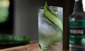 Τέσσερις παραλλαγές του κλασικού και αγαπημένου Gin Tonic για το σπίτι