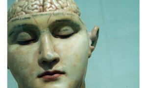 Πότε αρχίζει να γερνάει ο εγκέφαλός μας – Η απάντηση θα σας εκπλήξει